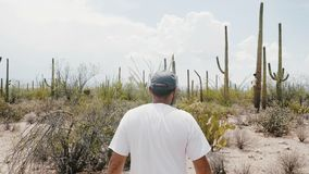 A câmera do movimento lento segue o deserto grande surpreendente de exploração do cacto do Saguaro do homem novo do turista no pa filme