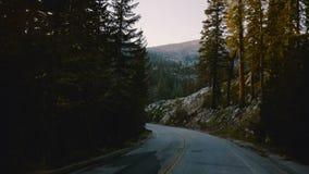 A câmera em um veículo está movendo-se ao longo da volta bonita da estrada da montanha da floresta entre árvores no por do sol no vídeos de arquivo