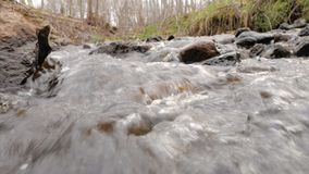 A câmera está movendo-se sobre a água fresca limpa de um córrego da floresta que corre sobre rochas musgosos video estoque