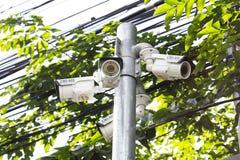 Câmera exterior do CCTV do ângulo múltiplo no Polo perto da árvore Imagem de Stock