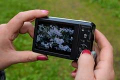Câmera nas mãos de uma mulher Foto de Stock Royalty Free
