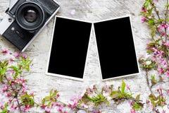 A câmera retro do vintage, as fotos vazias e as flores da mola ramificam Imagem de Stock