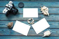 Câmera retro, folhas vazias das fotos Ap trocista Escudos do mar em um fundo de madeira Fotografia de Stock Royalty Free