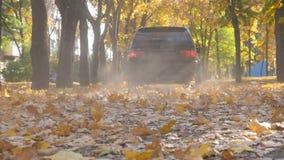 A câmera segue à condução de carro poderosa na estrada do parque sobre as folhas de outono amarelas no dia ensolarado Tomadas col filme