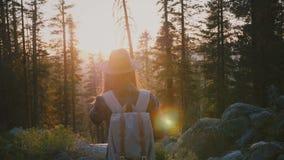 A câmera segue a menina calma do turista que caminha nas madeiras profundas, olhando o por do sol incrível no movimento lento das filme
