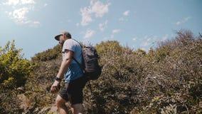 A câmera segue o homem feliz do turista com a trouxa do fotógrafo que caminha entre arbustos verdes luxúrias bonitos em uma monta video estoque