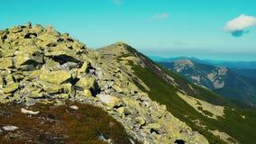A câmera toma a vista panorâmica do pico da cordilheira Carpathian Uma ideia das inclinações florestados e dos penhascos das mont video estoque