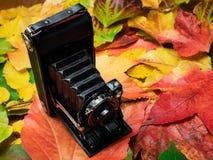 Câmera velha nas folhas de outono imagens de stock royalty free