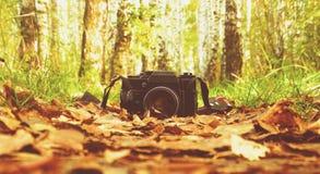 A câmera velha nas madeiras Fotografia de Stock
