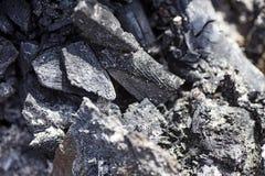 Cânone de alta qualidade queimado das cópias dos papéis de parede abstratos macro de madeira do fundo fotografia de stock royalty free
