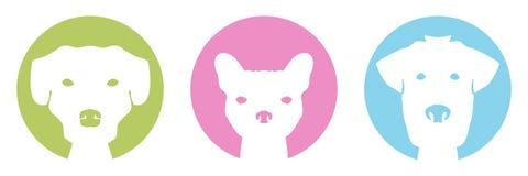 Cães da cor Imagens de Stock Royalty Free