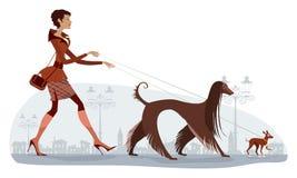 Cães de passeio Fotografia de Stock