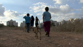 Cães de passeio childern do voluntário do abrigo animal video estoque