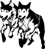Cães de trenó Fotografia de Stock Royalty Free