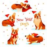 Cães do ano novo Fotos de Stock Royalty Free