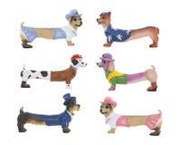 Cães do Dachshund imagens de stock royalty free