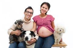 Cães do whit da família Imagem de Stock Royalty Free