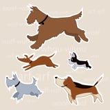 Cães dos desenhos animados Imagem de Stock