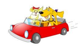 Cães dos desenhos animados no carro Fotos de Stock Royalty Free