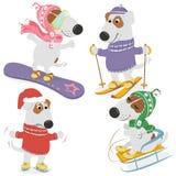 Cães e esportes de inverno ilustração do vetor
