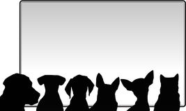 Cães e messageboard Fotografia de Stock Royalty Free