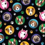 Cães e pata Imagem de Stock