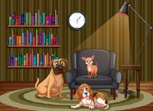 Cães e sala de visitas Fotografia de Stock