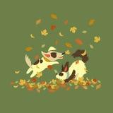 Cães engraçados que jogam com folhas de outono Fotografia de Stock