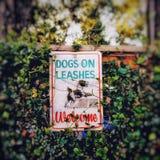 Cães no sinal bem-vindo da trela fotografia de stock royalty free