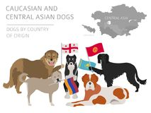 Cães pelo país de origem Raça asiática caucasiano e central do cão ilustração stock