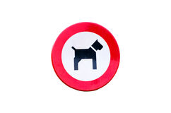 Cães permitidos o sinal isolado Imagens de Stock