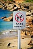 Cães proibidos fotografia de stock royalty free