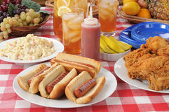 Cães quentes do almoço do piquenique fotografia de stock royalty free
