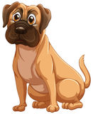 Cão ilustração stock