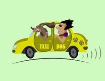 Cão alegre do táxi e do motorista Fotografia de Stock