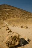 Cão ao lado da pirâmide vermelha imagens de stock