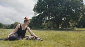 Cão bonito das trocas de carícias da jovem mulher no prado gramíneo video estoque