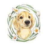 Cão bonito e flores Fotos de Stock