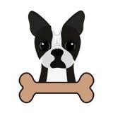 Cão bonito e osso Imagens de Stock Royalty Free