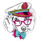 Cão bonito em um tampão do ` s do capitão Cachorrinho encantador ilustração stock