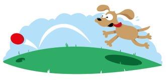 Cão bonito que segue uma esfera ilustração royalty free