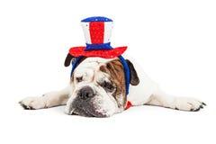 Cão cansado que veste o chapéu americano da celebração Imagens de Stock