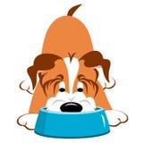 Cão com bacia ilustração do vetor