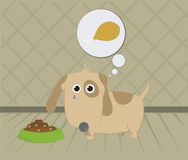 Cão com fome Imagem de Stock