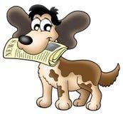 Cão com notícia Imagens de Stock Royalty Free