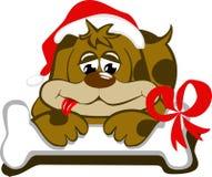 Cão com o tampão de Santa e de seu osso foto de stock royalty free