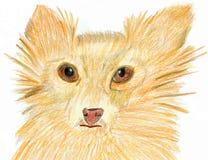 Cão com os olhos sonhadores maravilhosos ilustração royalty free