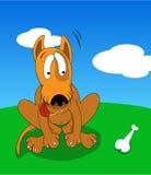 Cão com osso Imagens de Stock