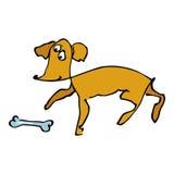 Cão com osso Fotos de Stock Royalty Free