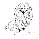 Cão com pé quebrado ilustração do vetor